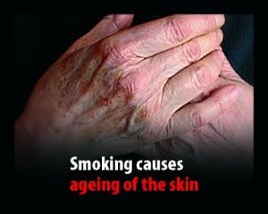 141743_smoking_skeleton