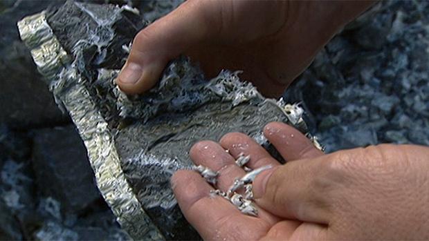 hi-asbestos-rad-can-852-8col