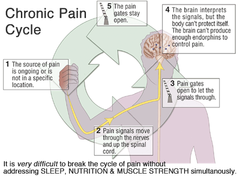 chronic_pain_cycle1